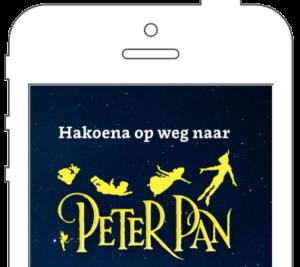 Hakoena appdesign voorbeeld